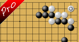 baduk To ko or not to ko