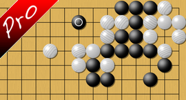 weiqi Endgame we do not know